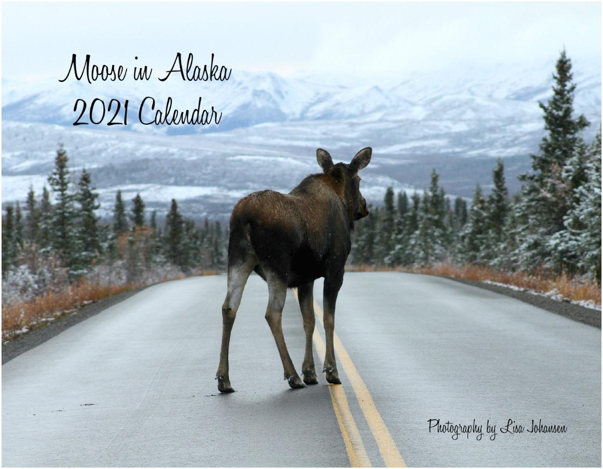 Moose in Alaska Calendar 2021