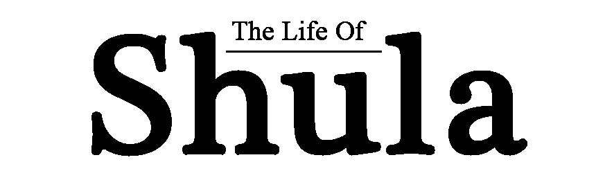Life of Shula