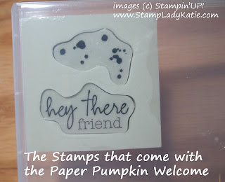the stamps from the My Paper Pumpkin Welcome Kit