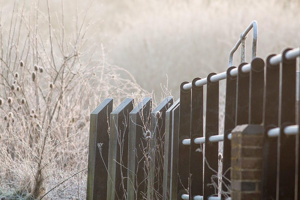 Frost and mist at the Old Lock