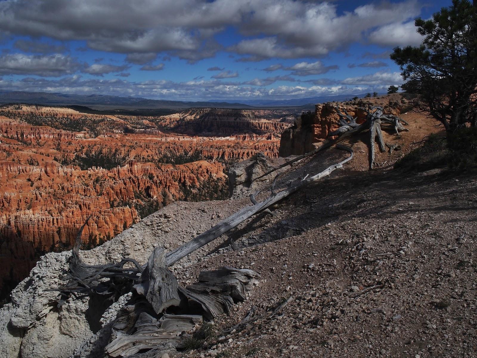 Rim Shots, #brycecanyon #rimshots #landscape 2014