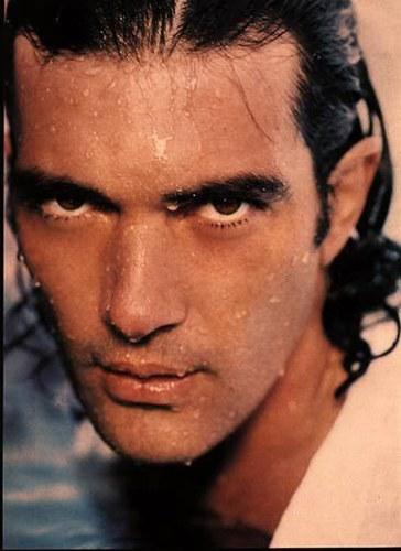 Desde então, Banderas estrelou inúmeros filmes de ação.