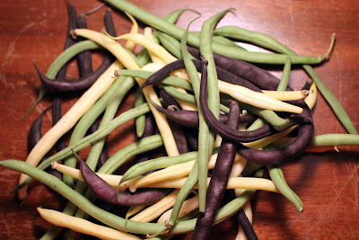 seasonal string beans from the farmer's market