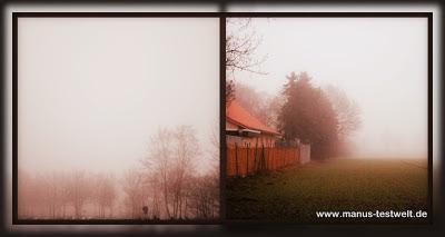 Tierheim im Nebel