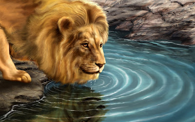 HD Lion Wallpapers for Backgrounds | 3D Lion wallpaers