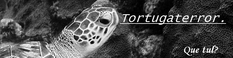 Tortugaterror