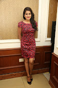 Vishaka singh at rowdy fellow event-thumbnail-18