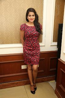 Vishaka singh glamorous Pictures 007.jpg