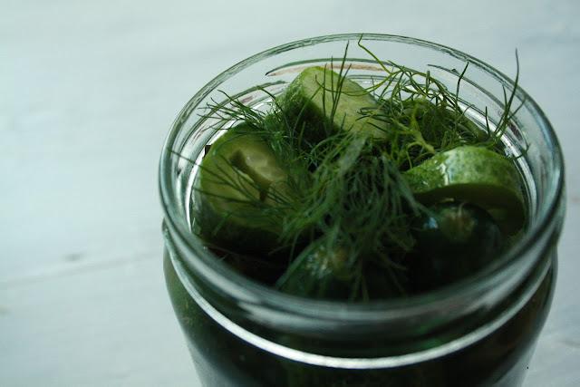 okurky zavařované kopr chilli