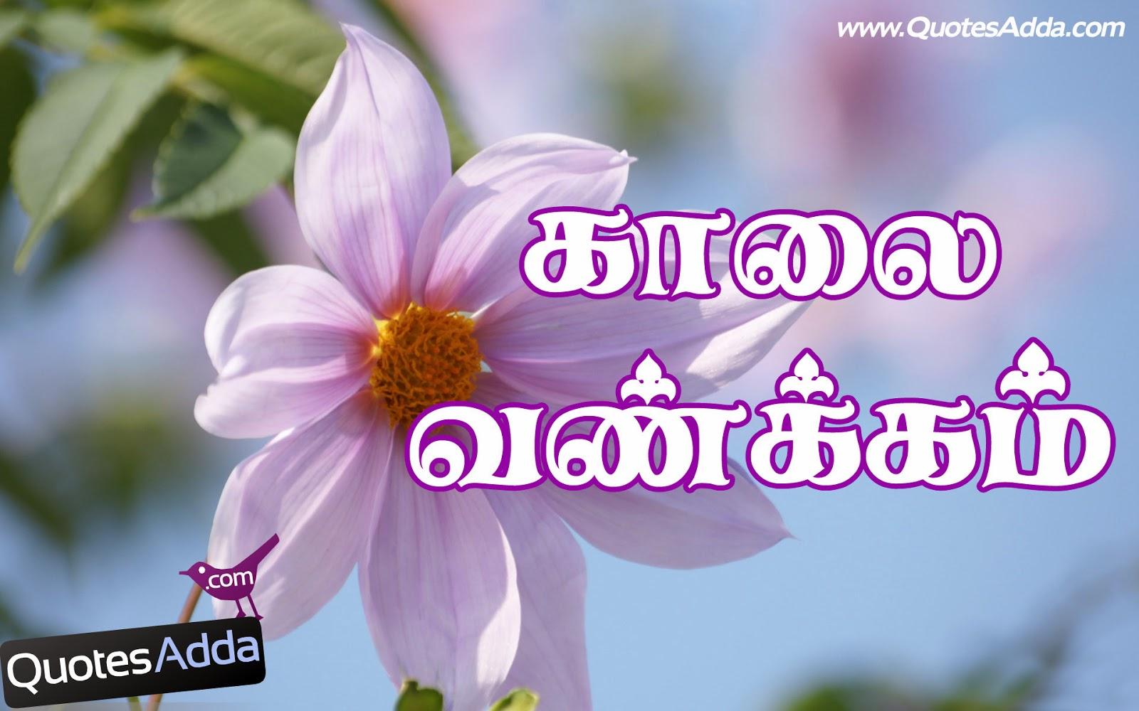 Good Morning Quotes Wallpapers in Tamil | Tamil Good Morning Kavithai