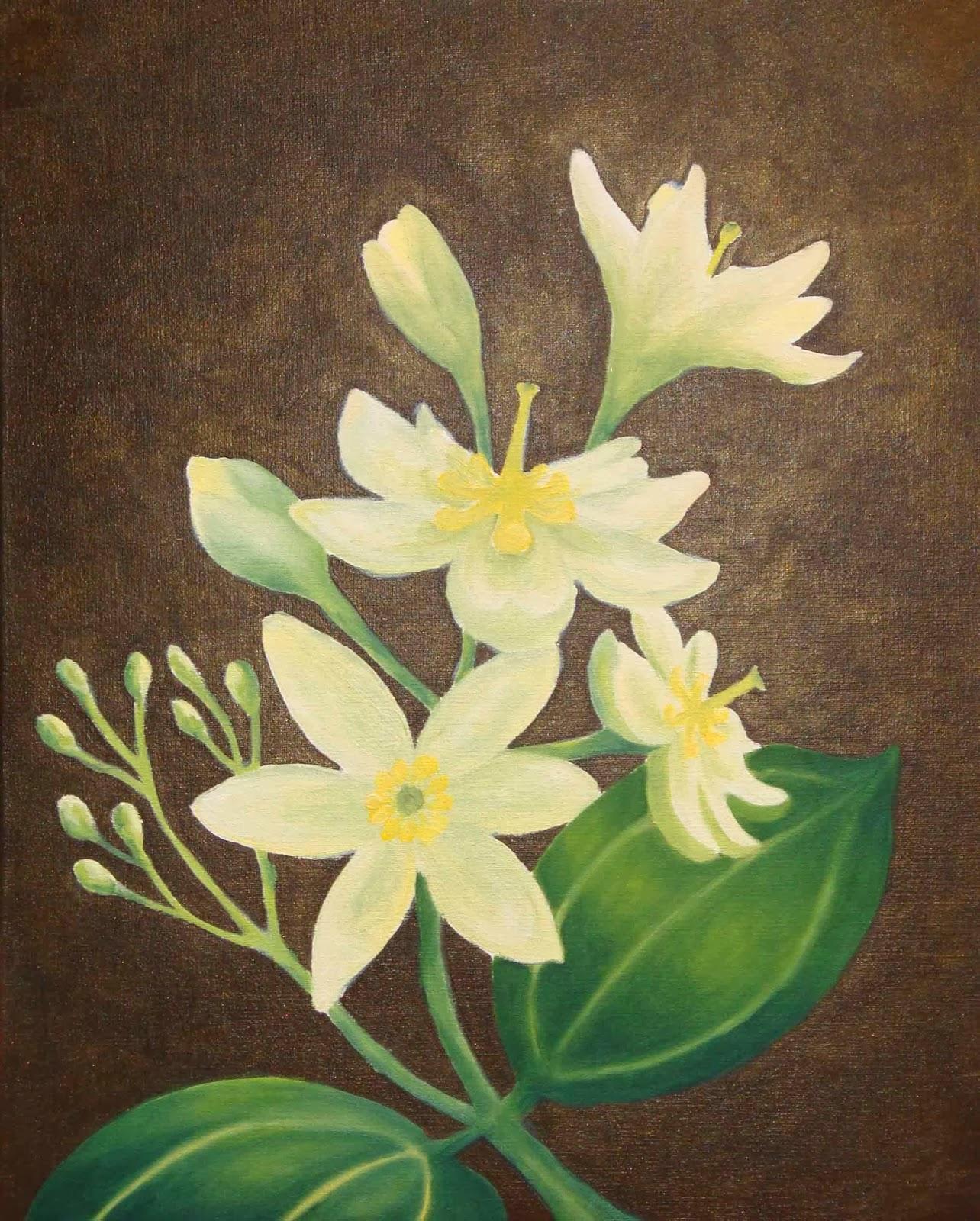 La flor dela canela – Dietas de nutricion y alimentos