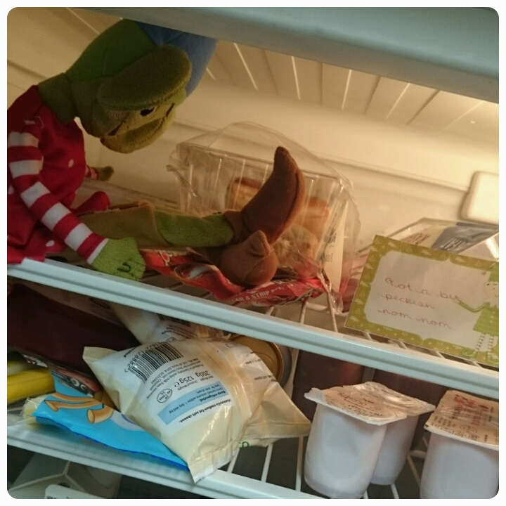 elf on the shelf in fridge