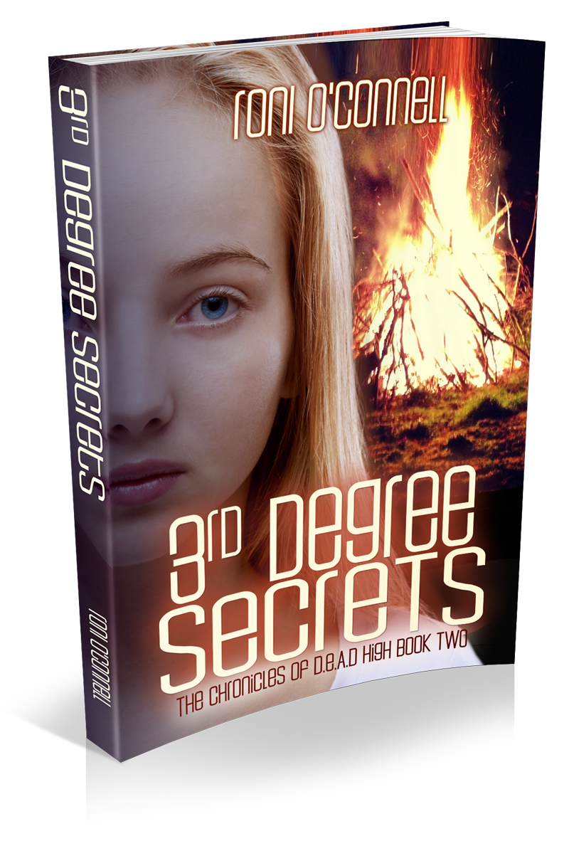 http://readsallthebooks.blogspot.com/2014/12/3rd-degree-secrets-review.html