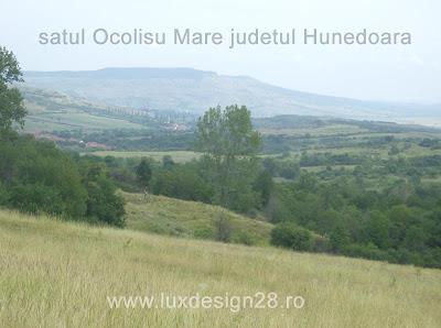 satul Ocolisu Mare in departare