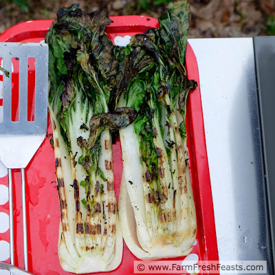 http://www.farmfreshfeasts.com/2015/05/grilled-bok-choy-story-of-picky-eater.html