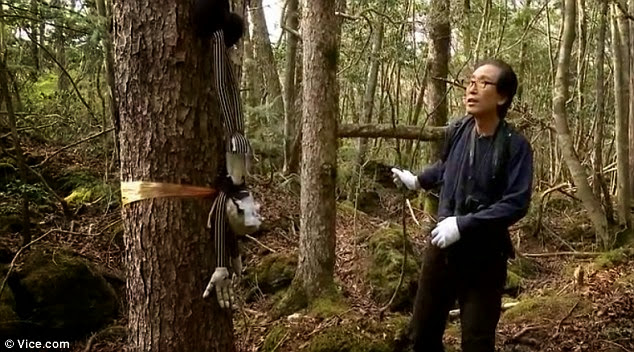 'Curse': Mr Hayano finds a doll nailed to a tree, which he says is an expression of hatred of society. Also visible is the plastic tape which people unravel to find their way out in case of a change of heart