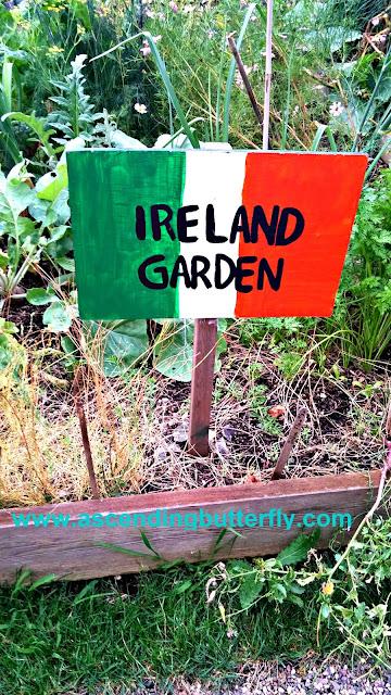 Ireland Garden - The Edible Academy, New York Botanical Garden