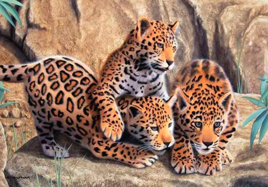 animales-pintados