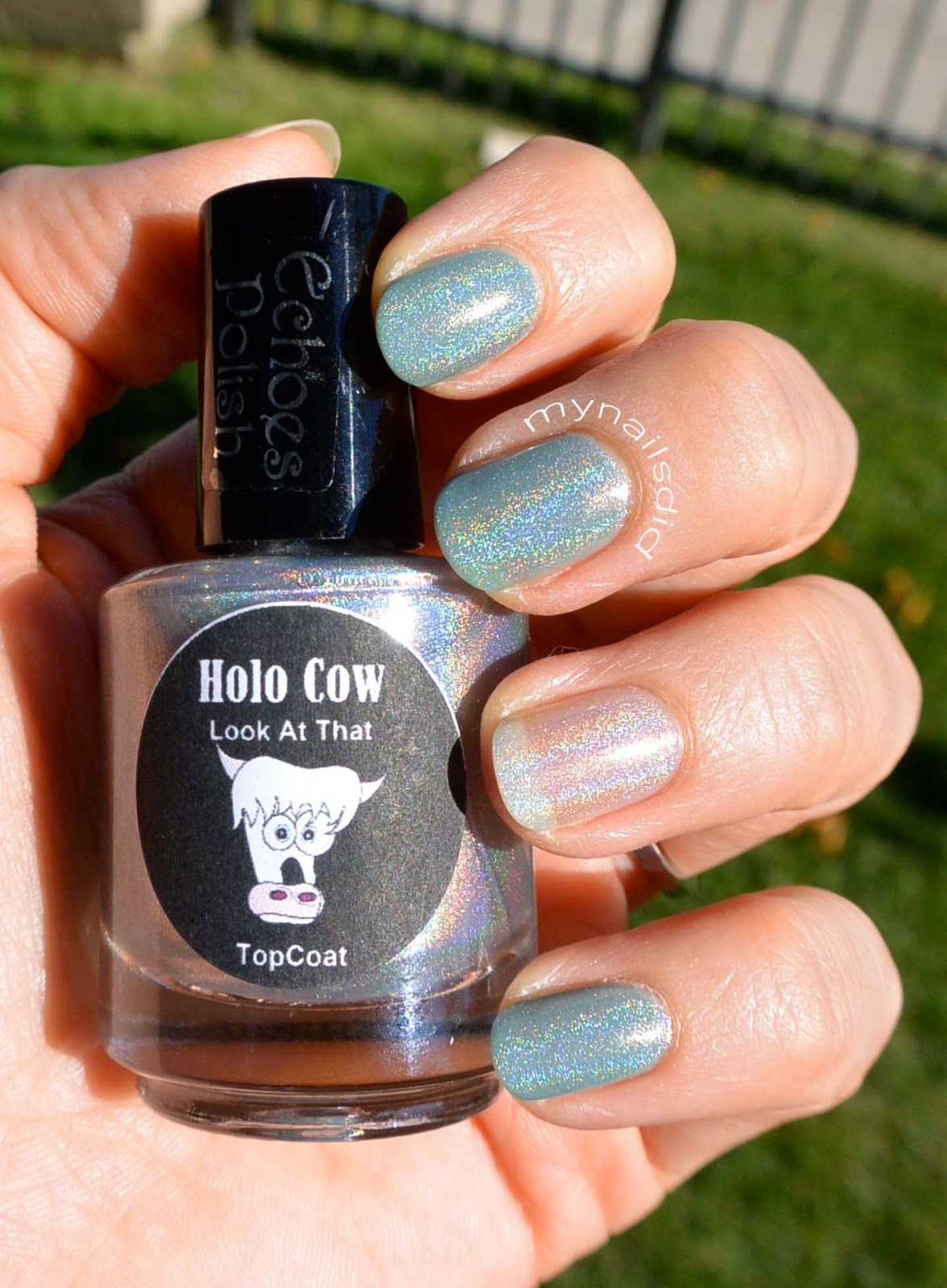 My Nails Did: Echoes Holo Cow Look at That Swatch