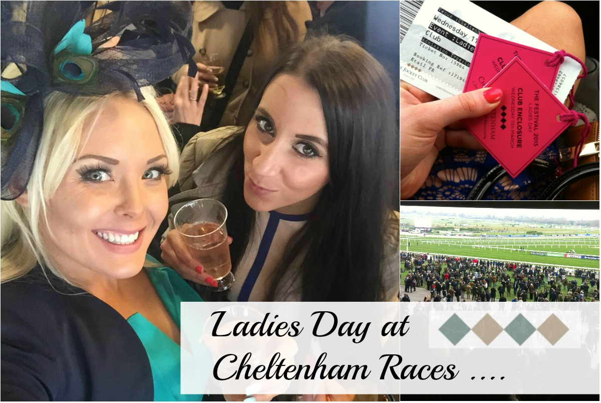 Cheltenham Day Races, Colour Me March