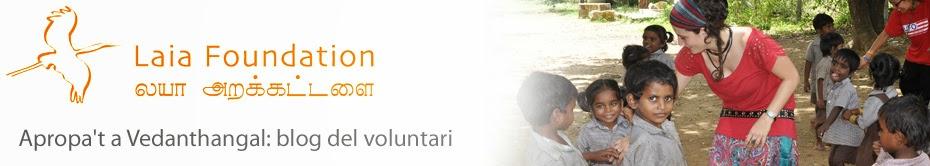 Laia Foundation