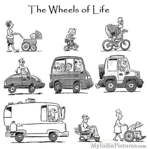 http://3.bp.blogspot.com/-DANhqpFB9Zg/UFriHQD1qQI/AAAAAAAAEnM/ecYzTb-qPBA/s1600/The+Wheel+of+Life+Cycle+Funny+Cartoon.jpg