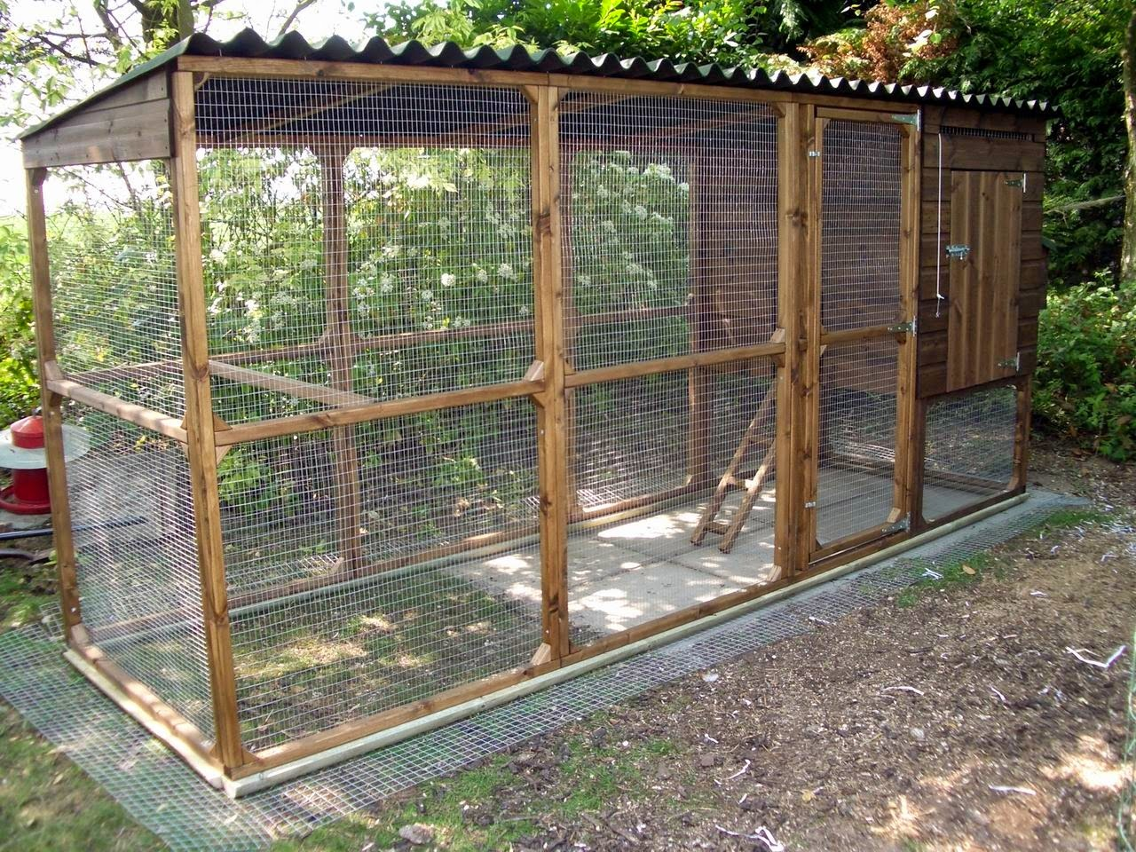 More infomation about chicken coop need infomation about for Chicken coop for 2 chickens
