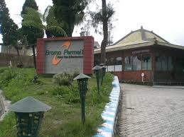 Bromo Permai 1 Hotel In Bromo
