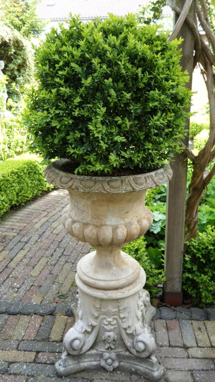 Landscaping With Urns : Flowers gardens beautiful garden statuary urns
