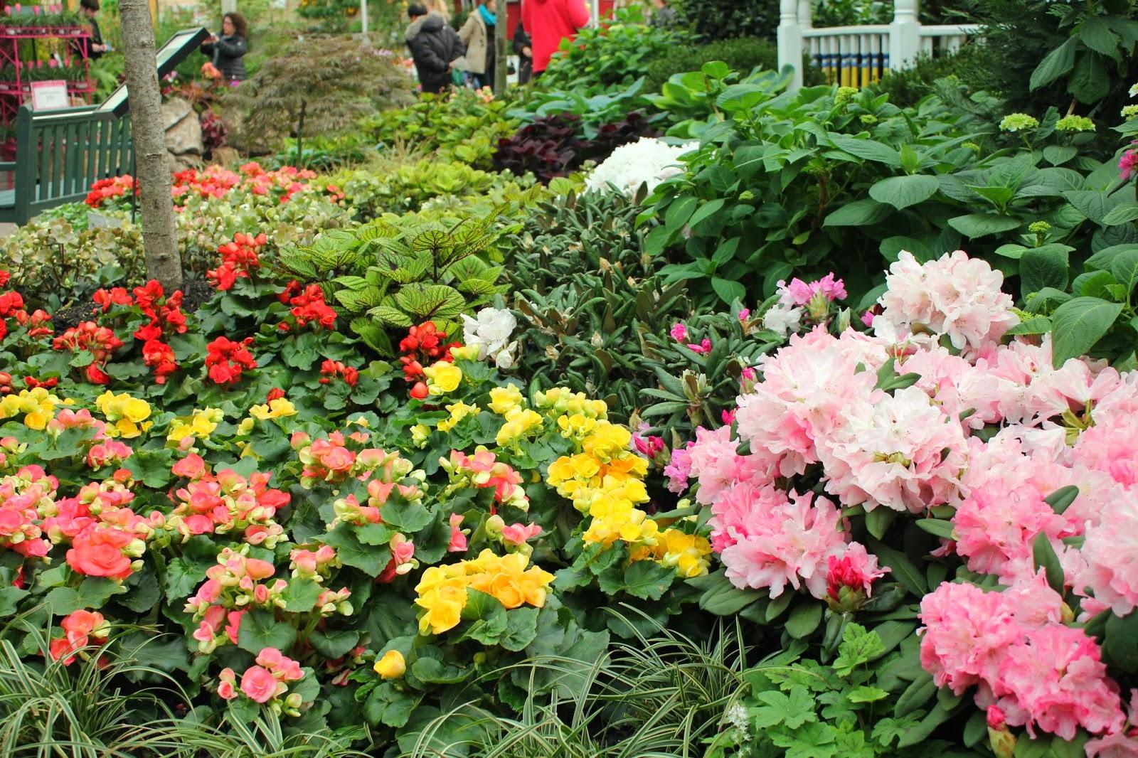 Gardening And Gardens Spring Flower Garden Show