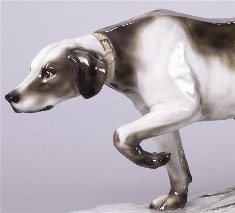 I Cani di Cacciapuoti