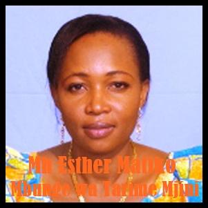 Mh Esther Matiko
