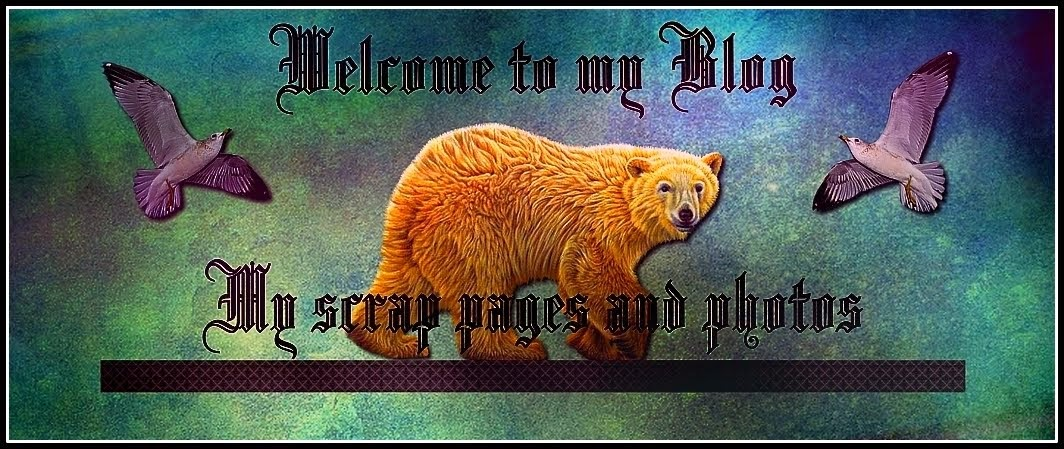 Welcome to Pelle`s blog