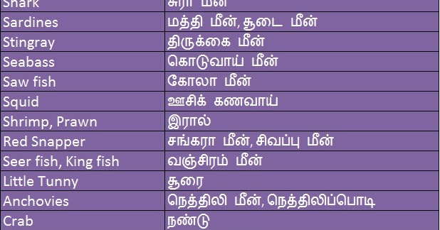 As Of Now Fish Name In English Amp Tamil