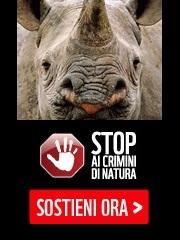 STOP AI CRIMINI DI NATURA
