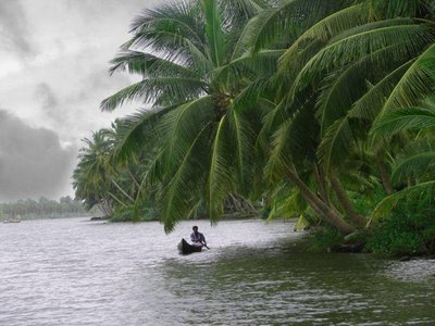 Characteristics of Tropical Monsoon Climate-Temperature, Rainfall, Seasonal Variation