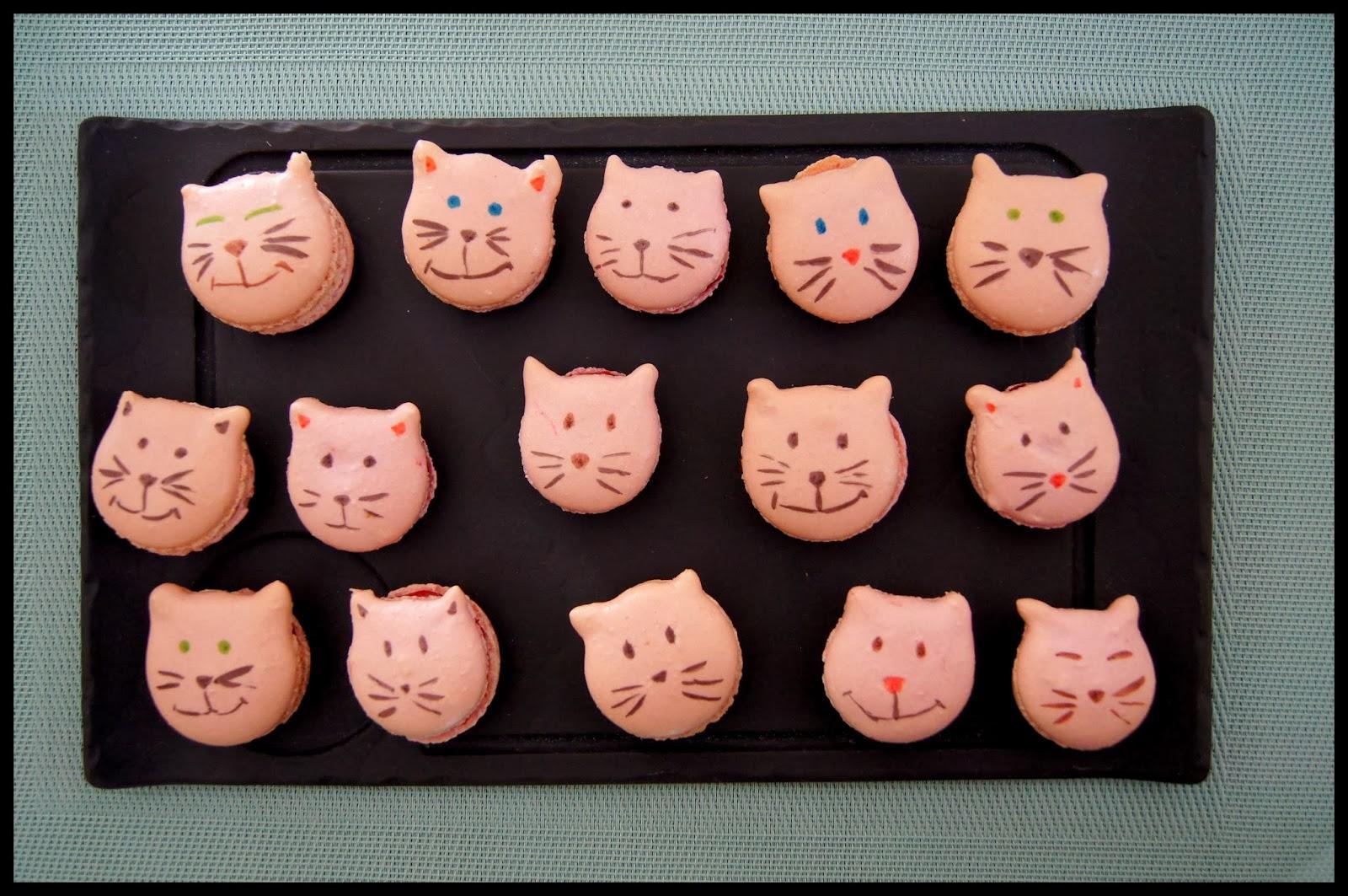 Pchs Gourmands Macaron Chat La Framboise