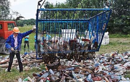 мусор из реки Боржавы