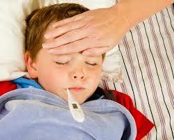 Pengobatan Alami Penyakit Tipes