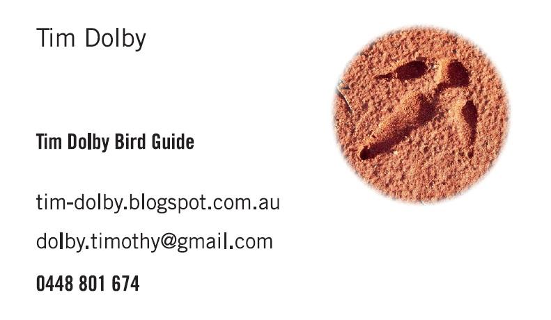 Tim Dolby Bird Guide
