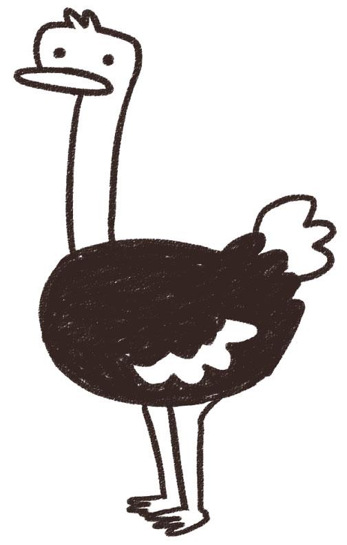 ダチョウの画像 p1_29