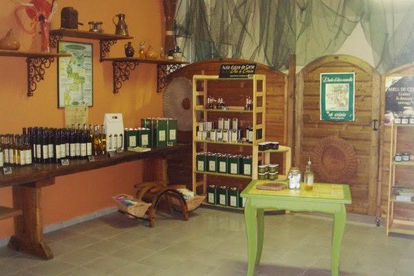 vente directe fabricant d'huile d'olive en Corse