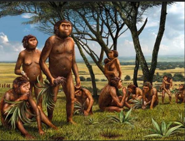 Sejarah Manusia Purba Di Indonesia Artikelsiana