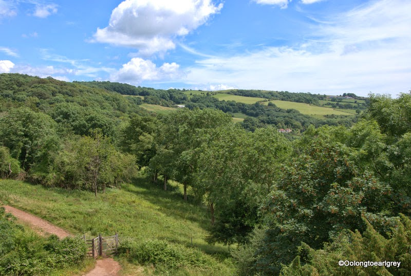View from the Lookout Tower, Cheddar Gorge, Somerset UK