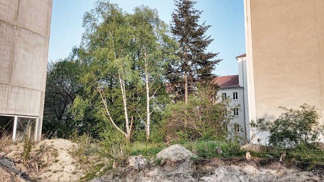 Baustelle Krankenhaus, Danziger Straße 77, 10405 Berlin, 19.04.2014