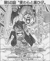 Straw Hat's Separation Serial Cover Story
