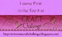 Top 3 CRAFT challenge