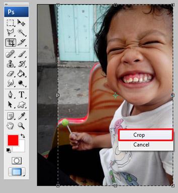 cara crop pdf adobe reader