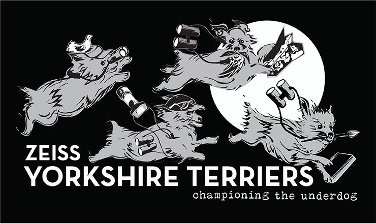 Support the Zeiss Yorkshire Terriers