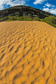 Dunes at Palm Beach